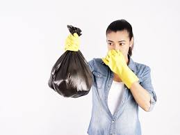 Lingering <b>Smells</b> and Mysterious <b>Odors</b>: How to Get Rid of Them ...