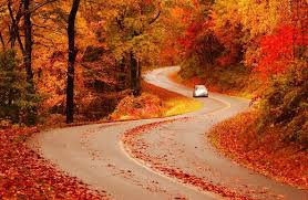Image result for blue ridge mountains fall