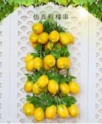 Model & Vegetable String Fruit Skewers <b>Farmstay</b> Restaurant ...