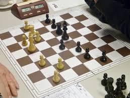 Afbeeldingsresultaat voor schaken lewenborg