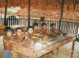 Resultado de imagem para Waimiri-Atroari sul do Estado de Roraima e norte do Amazonas