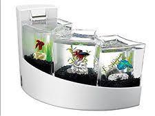 aqueon kit betta falls office desk aquarium