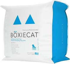 Litter Box 101: What Type of Litter is Best for Your <b>Cat</b>