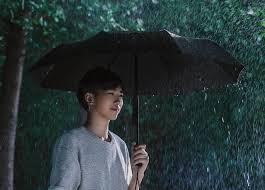 <b>Xiaomi Mijia Automatic folding</b> umbrella Sunny Rainy Aluminum ...