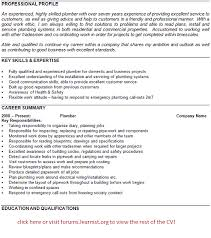 plumber cv example   template   job seekers forumsgood luck