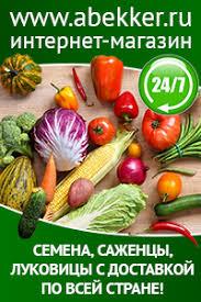 Выращивание <b>томатов</b>, устойчивых к фитофторозу: опыт члена ...