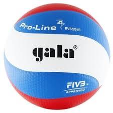 """<b>Мяч волейбольный</b> """"<b>GALA</b> School 10"""""""