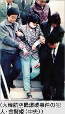 「1978年 - 大韓航空機銃撃事件。」の画像検索結果