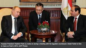 Image result for Egyptian nuclear plant