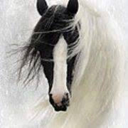 Picture of Horse <b>Paper Towel</b> Holder | Paper towell holders ...