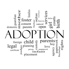essentials of a valid adoption under the hindu adoptions and essentials of a valid adoption under the hindu adoptions and maintenance act