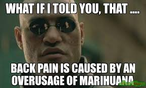 What if i told you, that .... Back pain is caused by an overusage ... via Relatably.com