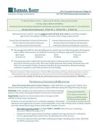 executive resume writers template executive resume writers