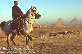 essay about egypt ancient ruins of egypt  photo essay  edge of humanity magazine man on a horse