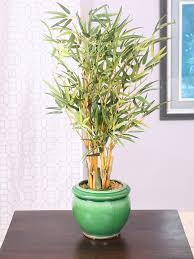 Buy Fourwalls Green <b>Artificial Bamboo Plant With</b> Ceramic Pot ...