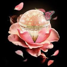 <b>House of Sillage</b> | OTRO Perfume Concept
