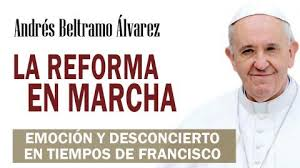 """Resultado de imagen para Andres Beltramo """"La reforma en marcha. Emoción y desconcierto en tiempos de Francisco"""""""