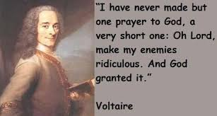 Voltaire Quotes - Inspirations.in