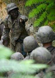the jungle essay conclusion   essayu s department of defense gt media photo essays essay view