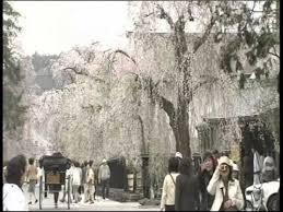 <b>Beautiful Landscapes</b> of <b>Japan</b> -- Season 1 Episode 13 - YouTube