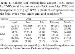 Water relations in physic <b>nut</b> according to climatic seasonality, in ...