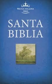 Resultado de imagen para biblias economicas