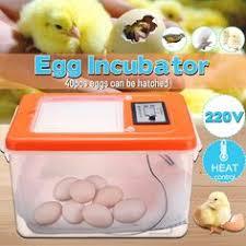 40pcs Egg Incubator <b>Digital</b> Automatic Cock Poultry Hatcher ...