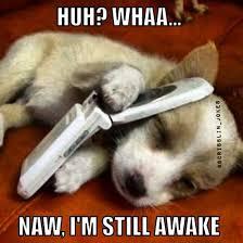 Funny Memes: Naw I'm Still Awake! - NoWayGirl via Relatably.com