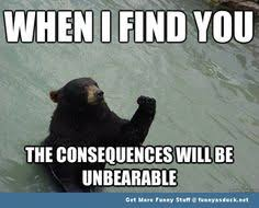 Funneh on Pinterest | Bear Meme, Funny Bears and Bears via Relatably.com