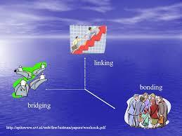 Resultado de imagem para bridging bonding linking