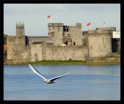 Image result for st john's castle limerick