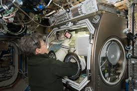 stem cells seem speedier in space nasa space station acircmiddot astronaut peggy whitson
