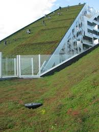 best images about green hill housing green roofs 17 best images about green hill housing green roofs architecture and singapore