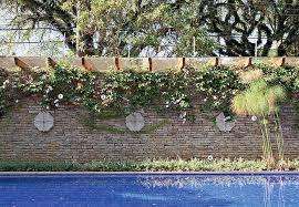 Resultado de imagem para paisagismo vertical em piscinas