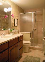 inspiring shower design ideas small showers