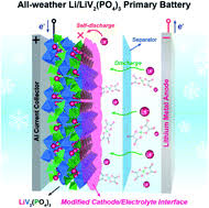 An all-weather Li/LiV2(PO4)<b>3 primary battery</b> with improved shelf-life ...