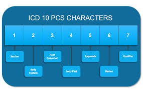 ICD-<b>10 PCS</b>: Harnessing the Power of Procedure Codes