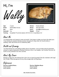 resume for dog groomer samples veterinary resume resume format pdf computx us dog walker resume walker resume sample dog walker