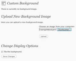 Custom Background Image Thesis Wordpress  Dissertation Report On