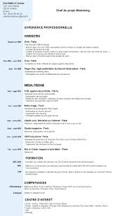 cv example word francais resume templates professional cv cv example word francais it cv example information technology cv curriculum vitae cv french resume in