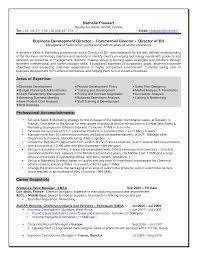 business sample business resume format simple sample business resume format full size