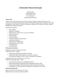 mortgage underwriter job description for resume resume mortgage underwriter job description for resume resume templates professional cv format