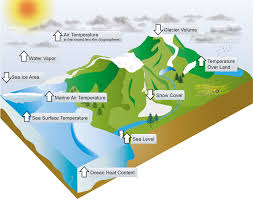 global carbon cycle ipcc image tips this is a required course for environmental science majors in their global carbon