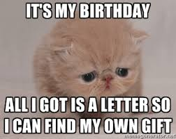 It's my birthday all i got is a letter so i can find my own gift ... via Relatably.com