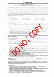writing cv examples tk category curriculum vitae