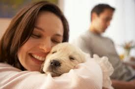 10 λόγοι για τους οποίους ένας σκύλος είναι καλύτερος από έναν άνδρα...