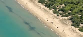 Risultati immagini per isola di varano spiaggia