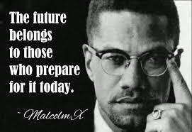 Malcolm X Quotes On Democrats. QuotesGram via Relatably.com