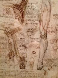 17 best images about leonardo da vinci 1452 1519 17 best images about leonardo da vinci 1452 1519 on sketchbooks notebooks and the study