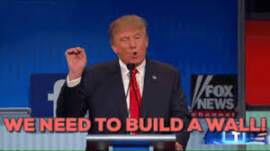 politicalproductsonline politics trump donald trump build a wall build wall